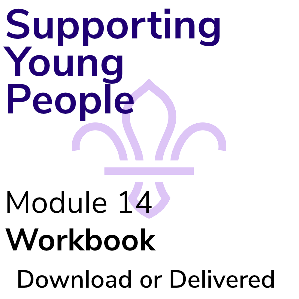 Supporting Young People – Workbook